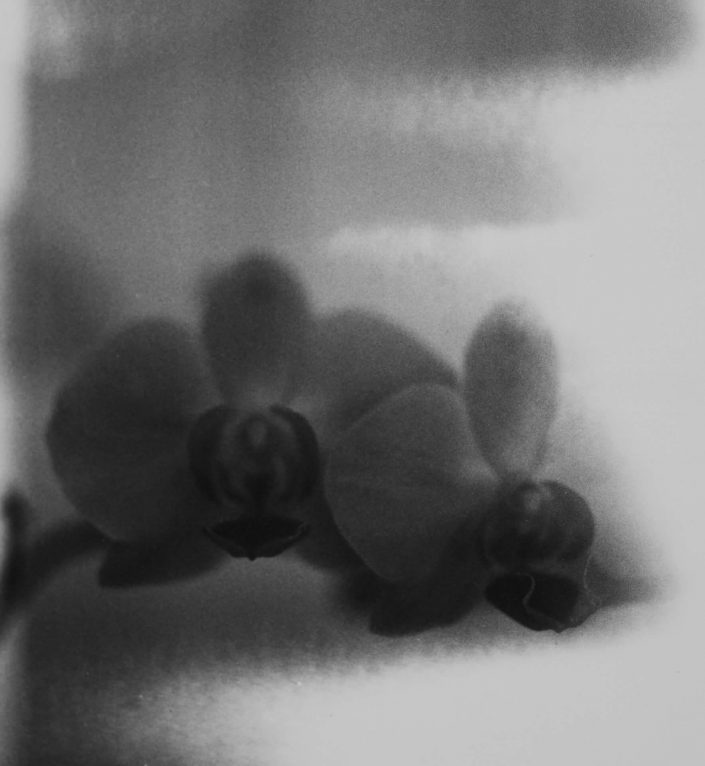il existait III.- analog film_gelatin silver print 11,5x11,5 cm(2021)- closed series (1_1)